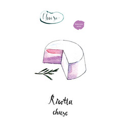 fresh italian ricotta cheese in watercolor vector image