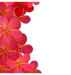 Pink Frangipani Frame vector