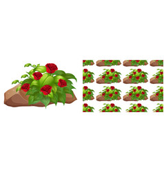 seamless background design with red roses on rock vector image