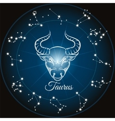 Zodiac sign taurus vector image vector image