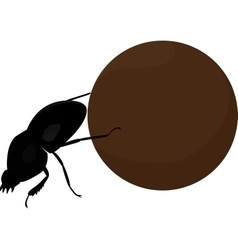 Scarab beetle with big manure ball vector image vector image