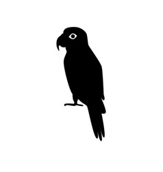 amazon parrot silhouette icon in flat style vector image