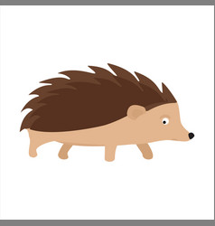 hedgehog prickly animal vector image
