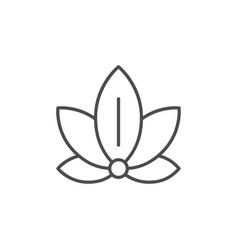 lotus position icon or yoga concept vector image