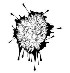 Tulips Grunge Sketch vector image