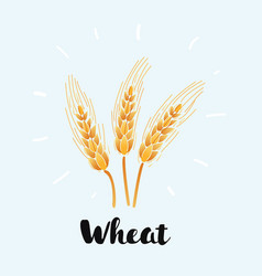 wheat icon on white background vector image