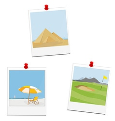 Poloaid pictures vector image