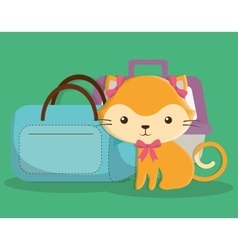 Cat cartoon pet design vector
