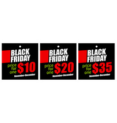 set sale tags on black friday vector image