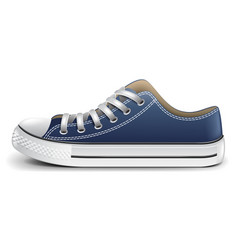 sneaker side view isolated vector image