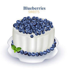 Blueberries cake realistic on vector