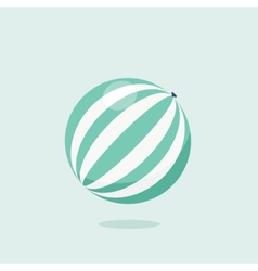 Bright inflatable ball isolated on white vector image