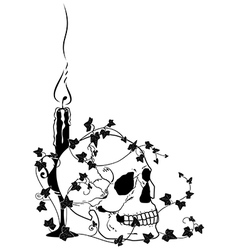 Candle skull and ivy vector