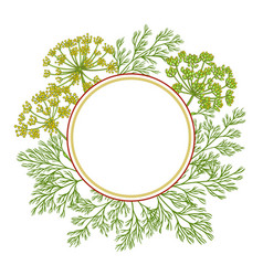 Dill plant frame on white background vector