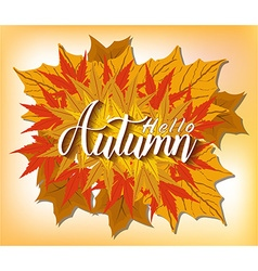For autumn and thanksgving vector