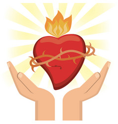 hand with sacred heart jesus christ image vector image