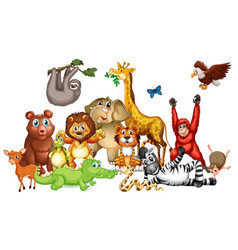 Many cute animals on white background vector