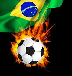 Soccer FirFlag vector image