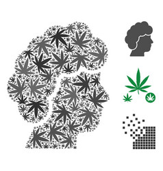 woman profile collage of hemp leaves vector image