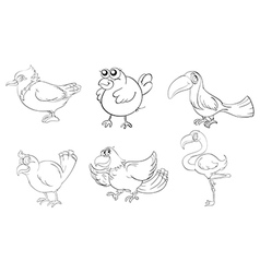 Different birds in doodle design vector image