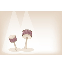 Two Beautiful Cabasa on Brown Stage Background vector image vector image