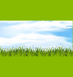 Background scene with green field at daytime vector