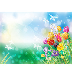 background with multicolor spring flowers vector image