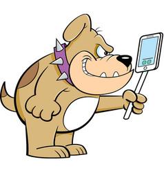 cartoon angry bulldog holding a cell phone vector image