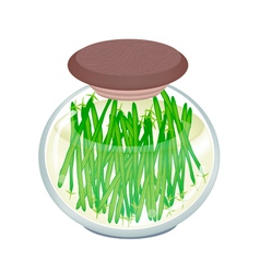 Delicious pickled green bean in a jar vector