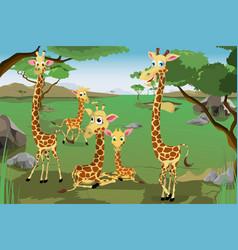Family of giraffes vector