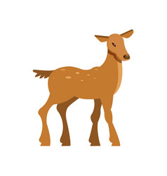 Graceful spotted fallow roe deer wild animal vector