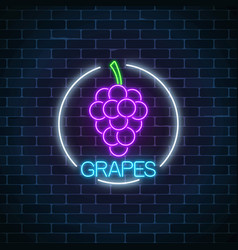 neon glowing sign of grapes with bunch of grape vector image