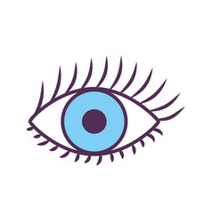 Sexy female eye icon vector
