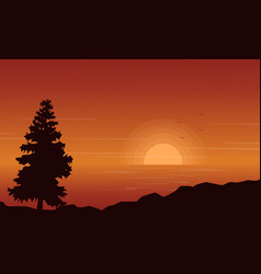 Silhouette of spruce on lake at sunset vector