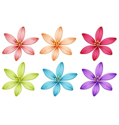Six flowers vector