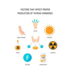 Thyroid hormones vector