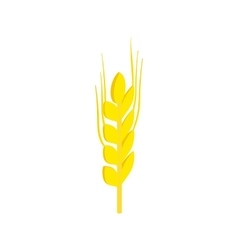 Two stalks of ripe barley isometric 3d icon vector image