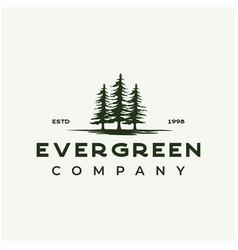 Vintage rustic retro evergreen pines spruce cedar vector