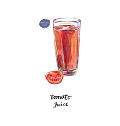 glass of fresh tomato juice tomato in watercolor vector image vector image