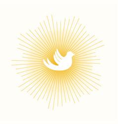 dove in sun lights vector image