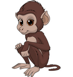 funny cute monkey vector image