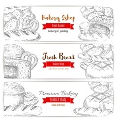 Anadama bread and baguette sketch banner vector