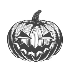 Black and white hand drawn halloween pumpkin vector