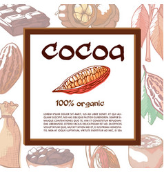 cocoa beans tree banner with mock up for text vector image