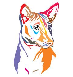 colorful decorative portrait of dog basenji vector image