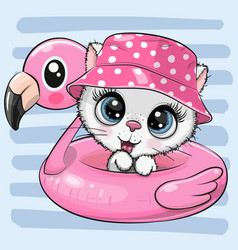 kitty in panama hat swimming on pool ring vector image