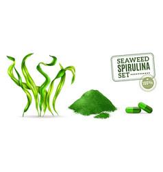 spirulina realistic set vector image