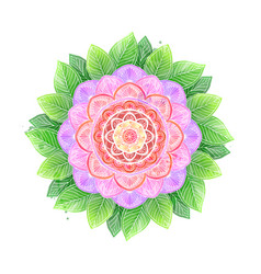 Watercolor flower abstract mandala vector