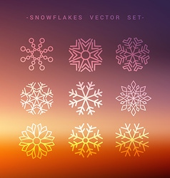 Winter snow flakes collection vector