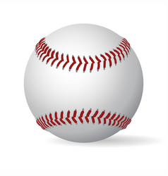 leather baseball ball vector image